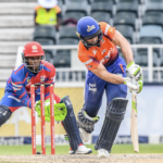 Cobras steal 3-run thriller over Lions