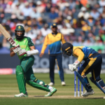 Amla, Faf fire as Proteas bounce back
